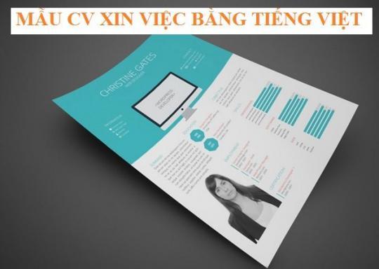 2. Mách bạn cách viết CV tiếng Việt hoàn hảo
